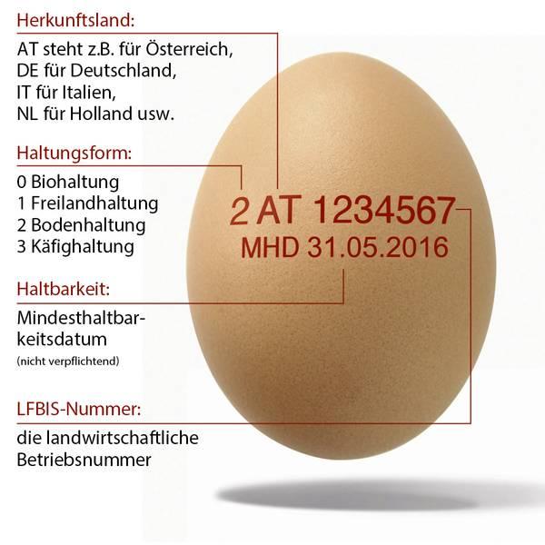Vergiftete Eier Nummer